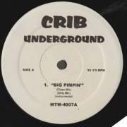 VARIOUS ( CRIB UNDERGROUND ) - BREAK FOOL - BIG PIMPIN