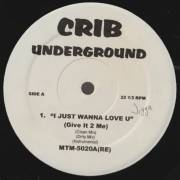 VARIOUS ( CRIB UNDERGROUND ) - I JUST WANNA LOVE U ( GIVE IT 2 ME ) - ARE YOU FUC**NG AROUND