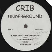 VARIOUS ( CRIB UNDERGROUND ) - WHAT'S YOUR FANTASY ? - COLD AS ICE - FUHGIDABOWDIT