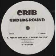 VARIOUS ( CRIB UNDERGROUND ) - WHAT THE WORLD MEANS TO YOU -KEEP ON LOVIN - CHANGE THE WORLD